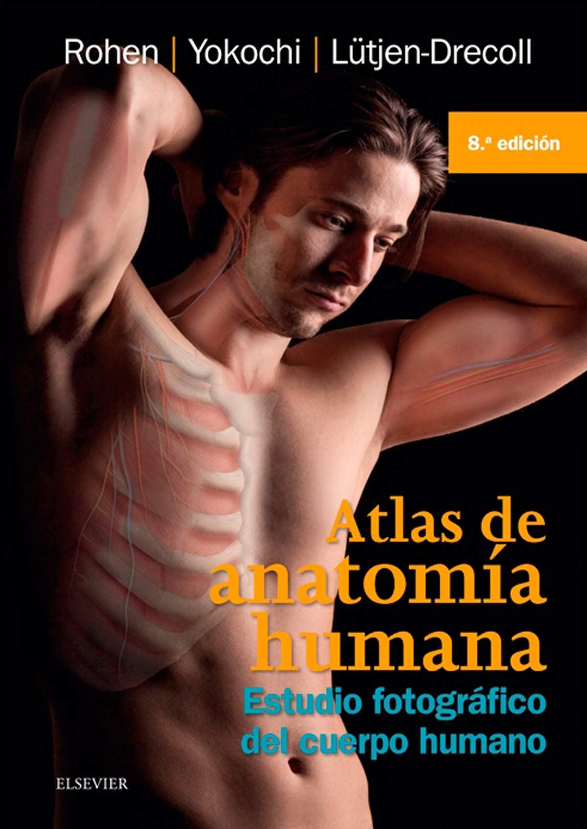 Reseña Bibliográfica: Atlas de anatomía Humana de Rohen y Yokochi