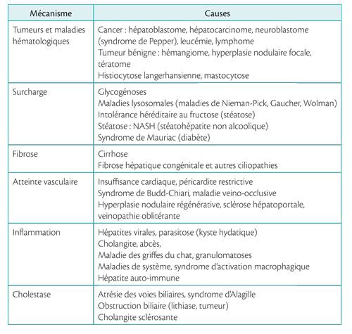 Mécanismes hépatomégalies