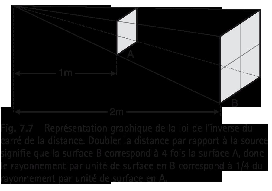 Représentation graphique de la loi de l'inverse du carré de la distance