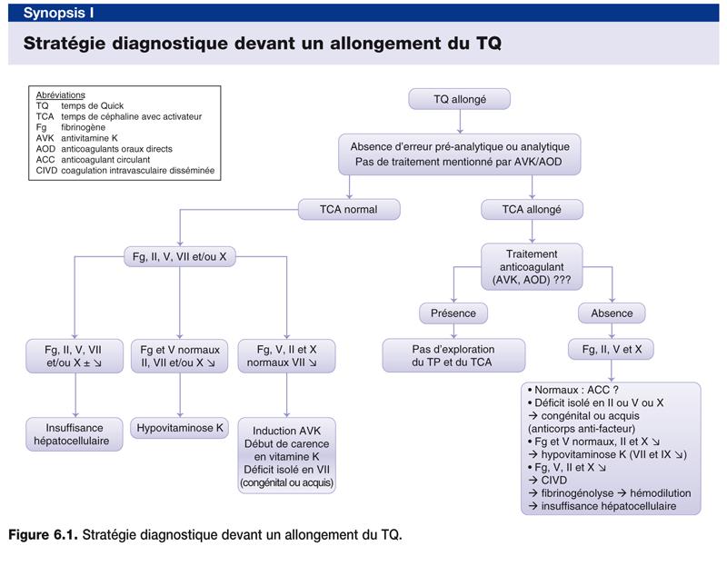 Stratégie diagnostique devant un allongement du TQ