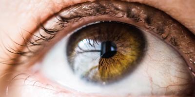 Impact de la DMLA sur les mouvements oculaires
