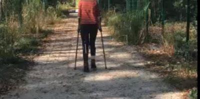 Réadaptation du handicap douloureux chronique