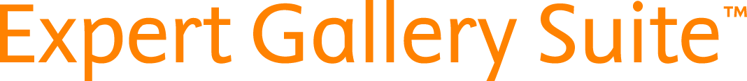 orange-logo-of-ExpertGallerySuite | Elsevier