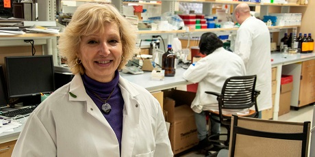 Professor Donna Huryn in the lab