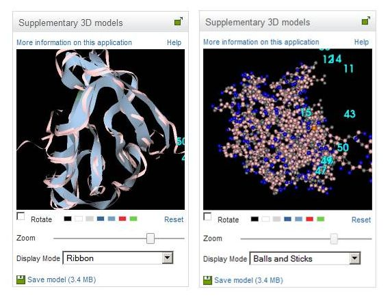 Figure 4. Ribbons (left) and balls-and-sticks (right) visualizations of a 3D molecular model.