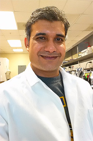 Ajeet Kaushik, PhD, is Associate Professor in the Center for Personalized NanoMedicine, Department of Immunology, Florida International University.