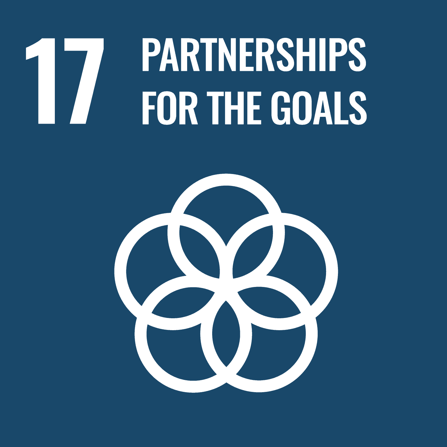 Partnerships to achieve the Goal
