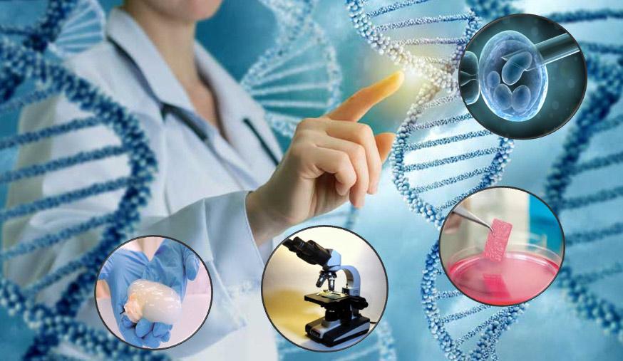 medicina-regenerativa.jpg