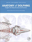 Anatomy of Dolphins, 1st Edition