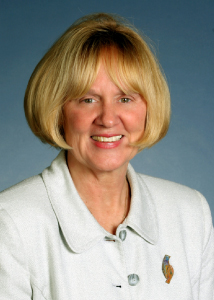Bonnie Wesorick, MSN, RN, DPNAP, FAAN