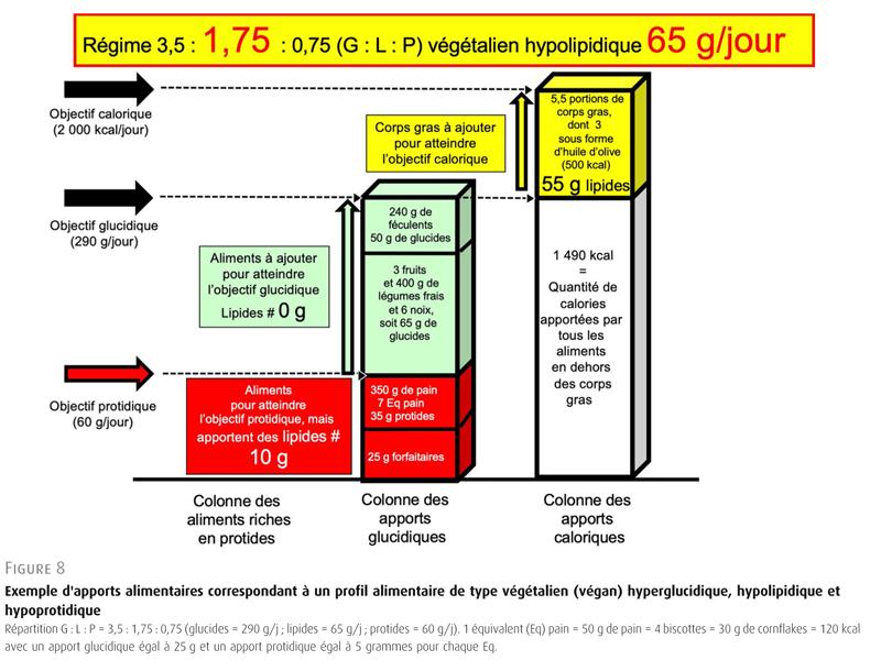 Figure 8. Exemple d'apports alimentaires correspondant à un profil alimentaire de type végétalien (végan) hyperglucidique, hypolipidique et hypoprotidique