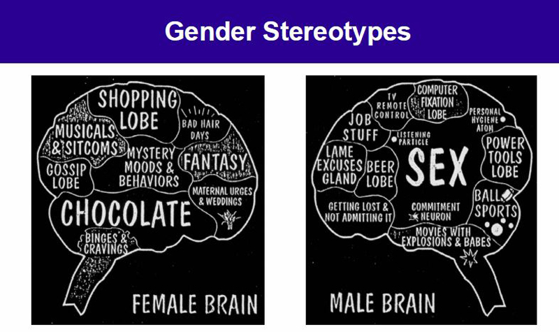 Dr. Ute Habel used this slide during her presentation to illustrate the power of gender stereotypes.