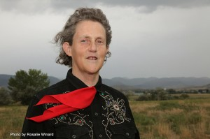 Professor Temple Grandin, PhD, at the Colorado State University Experiment Station (Photo by Rosalie Winard)