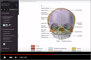 New Gray's Anatomy makes learning more interactive
