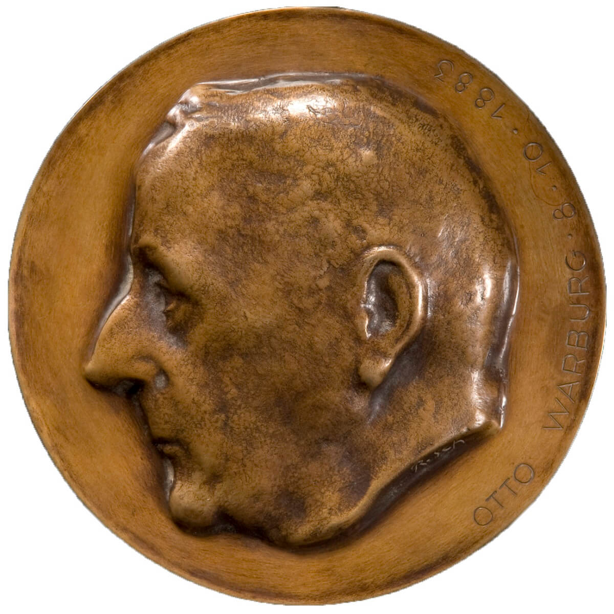 Medal Freigestellt