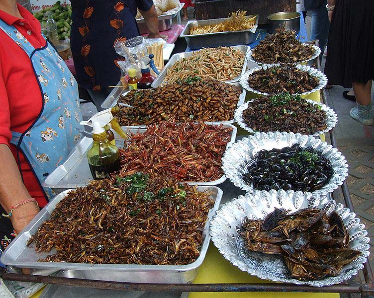 Deep-fried insects at a market stand in Thailand, 2007 (Photo by <a href=http://commons.wikimedia.org/wiki/File:Insekten.jpg>An-d</a> for Wikimedia Commons)