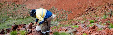 Mit Geofacets die Produktivität des Teams steigern - Solutions | Elsevier