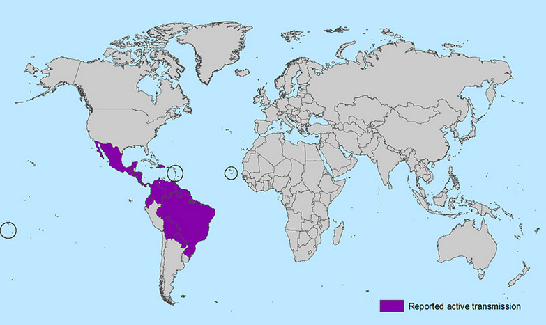 Zika outbreaks are occurring in many countries, and the virus is expected to spread further. (Source: <a target=&quot;_blank&quot; href=&quot;http://www.cdc.gov/zika/geo/index.html&quot;>Centers for Disease Control</a>)