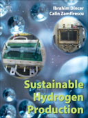 Sustainable Hydrogen Production, 1st Edition