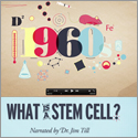 Animated videos introduce stem cell science in one-minute bursts