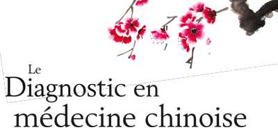 Le Diagnostic en médecine chinoise de Giovanni Maciocia