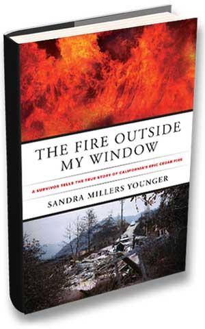 The Fire Outside my window