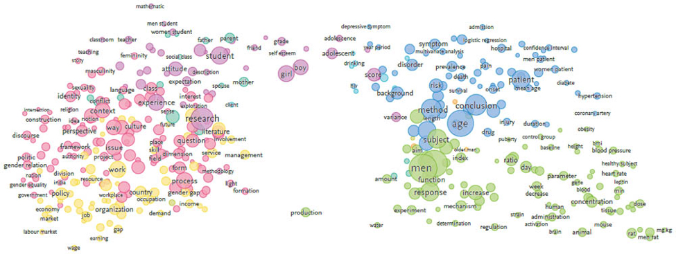 <strong>Figure 3.1</strong> &mdash; Terms with 40+ occurrences in worldwide gender research, 1996 &ndash; 2000 (Sources: Scopus and VOSviewer). Click on image to enlarge.