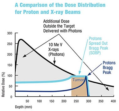Dose distribution for proton and xray beams