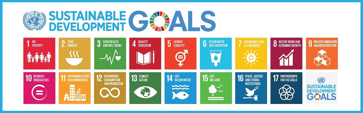 The 17 SDG's Perspectives Project